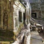Kambodžos Angkor Wat šventykla